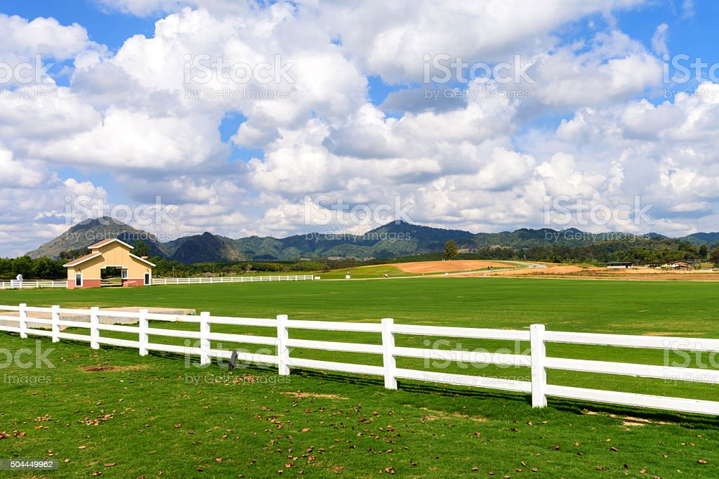 Green meadow with blue sky and white fence stock photo