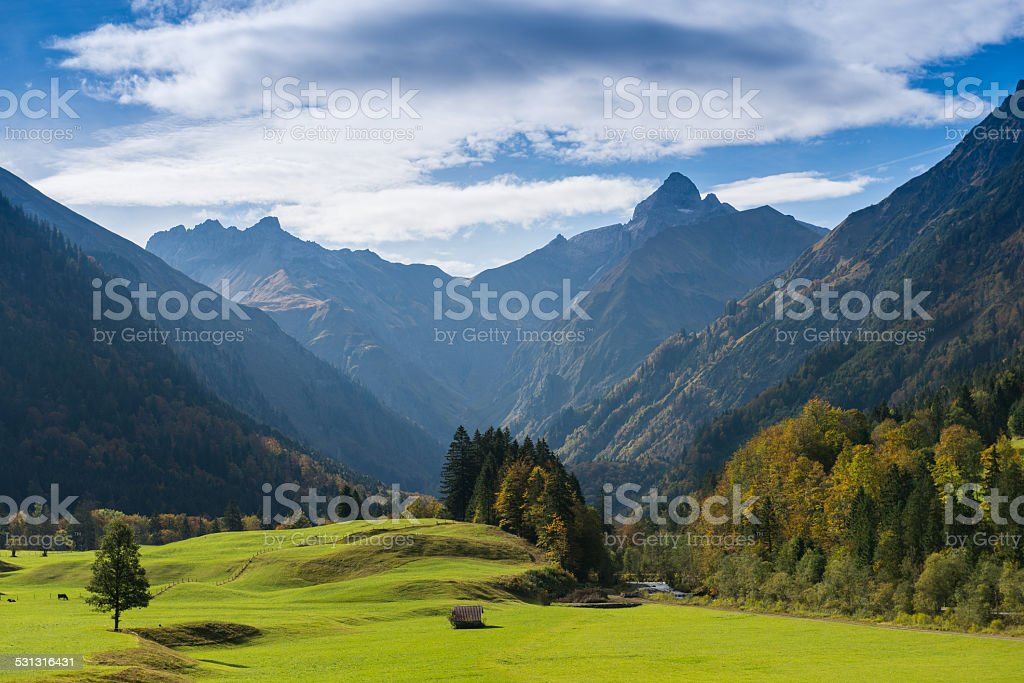 Green meadow with mountain peak stock photo