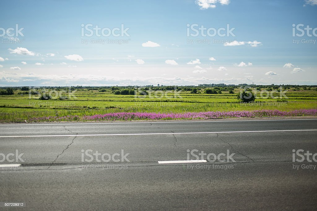 green meadow with trees and asphalt road, blue sky on stock photo