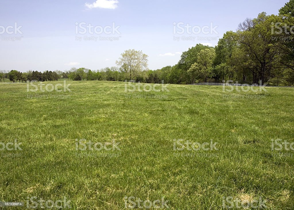 Green Meadow with White Fence stock photo