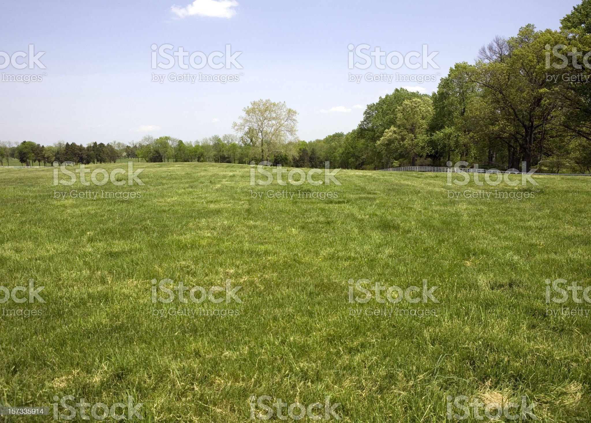 Green Meadow with White Fence royalty-free stock photo