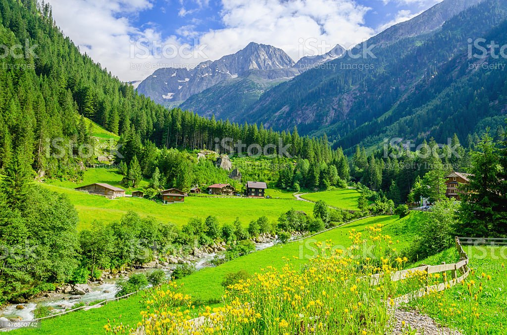 Green meadows, alpine cottages in Alps, Austria stock photo