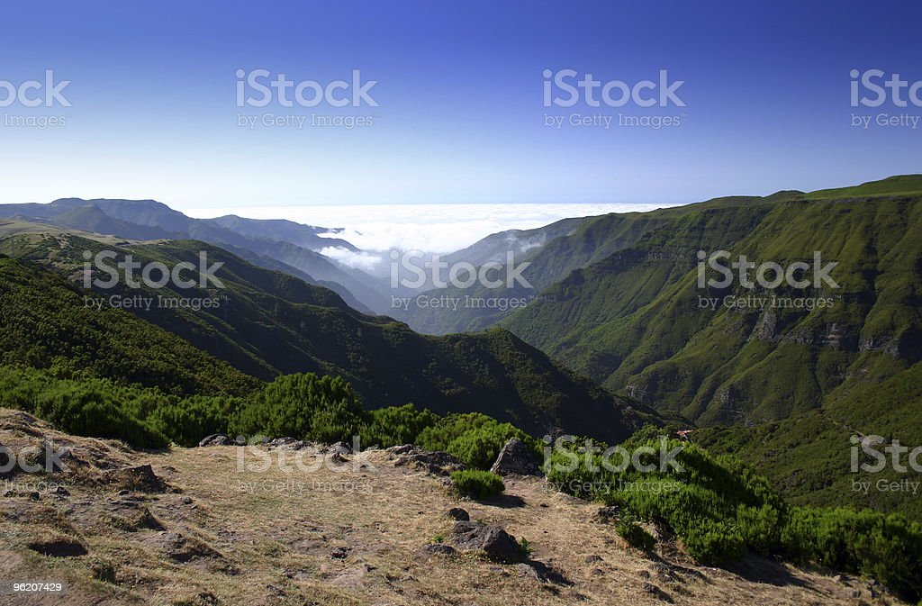 Green misty valley on Madeira royalty-free stock photo