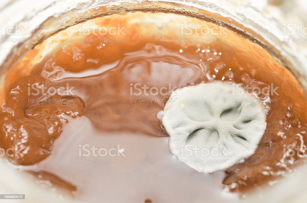 green mold on a jar of jam stock photo
