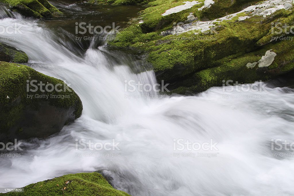 Green Moss Mountain Stream Flowing Water Smoky Mountains Tennessee royalty-free stock photo