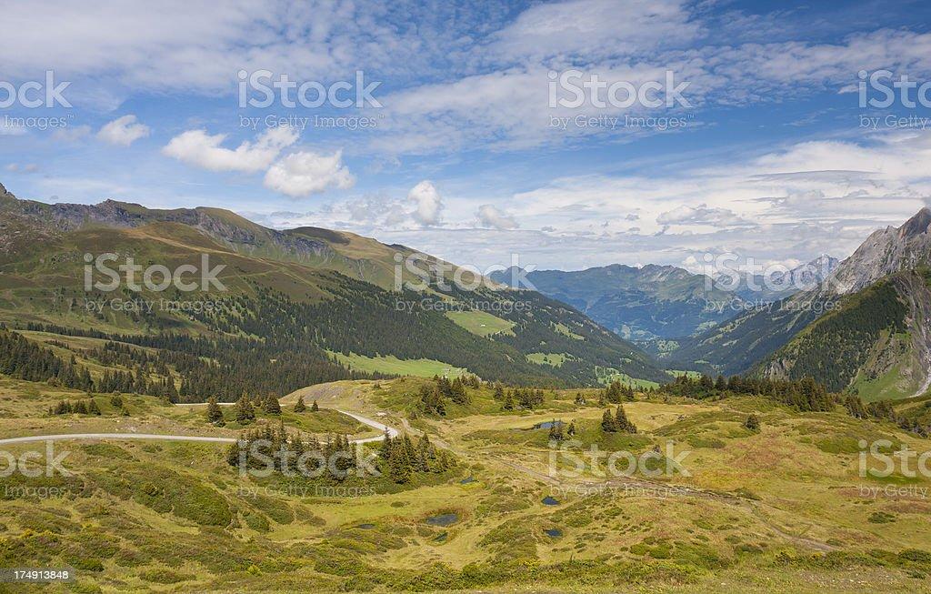 Green Mountain Landscape, Swiss Alps stock photo
