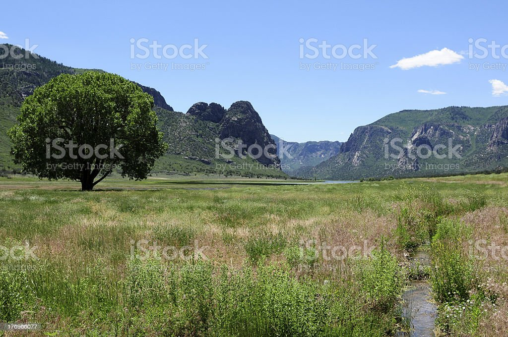 Green Mountains and Wet Meadow stock photo