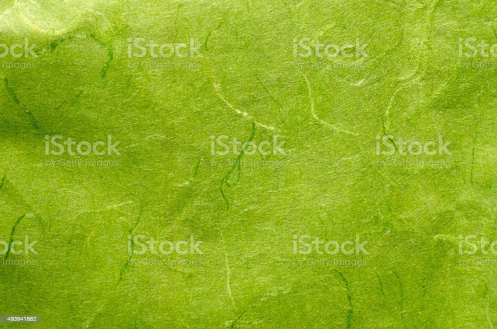 green mulberry paper stock photo