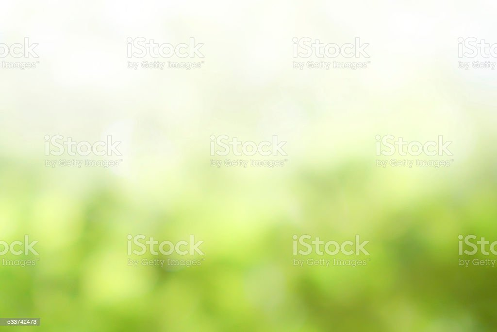 Green nature blurred background stock photo