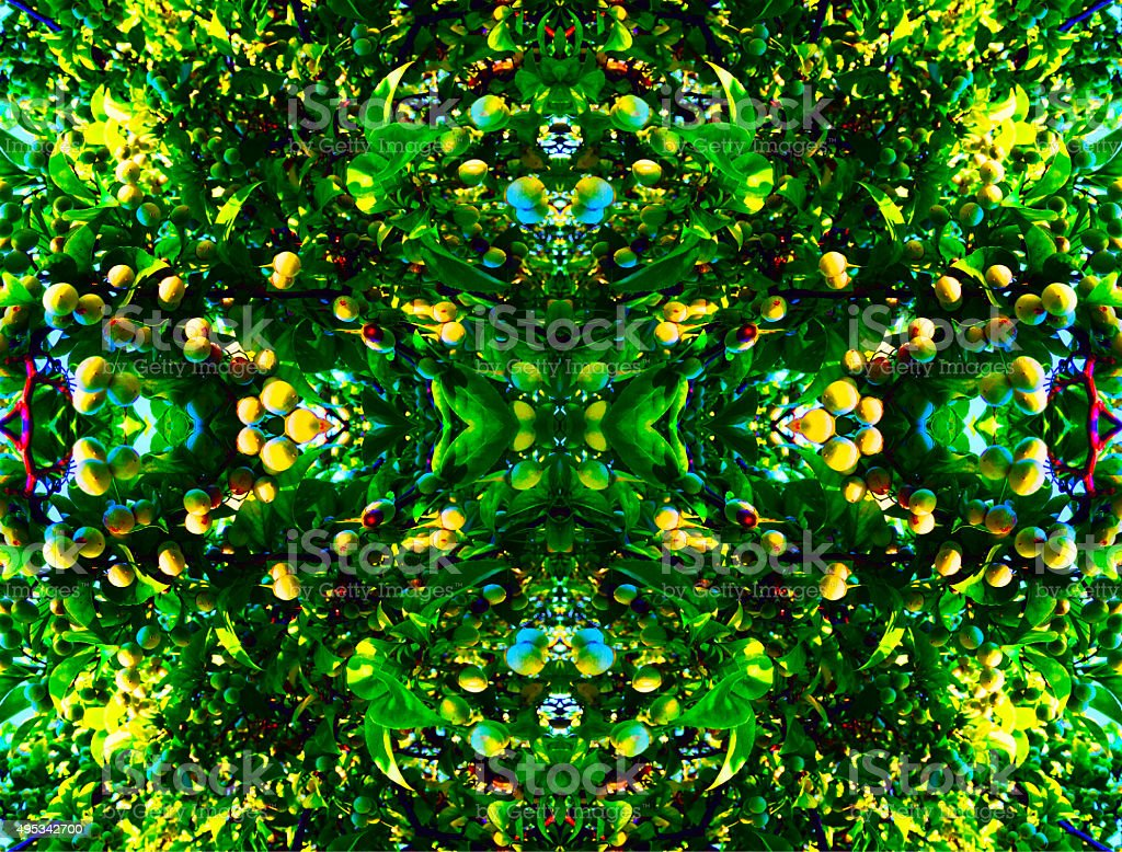 Green nature floral abstract backgound royalty-free stock photo