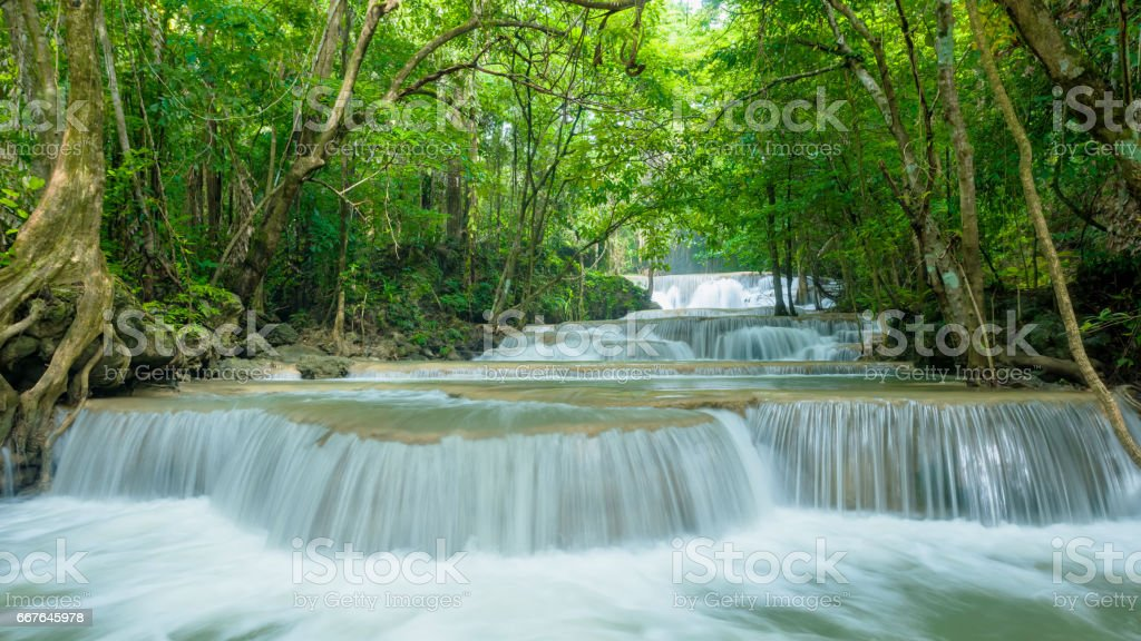 Green nature with green waterfall landscape stock photo