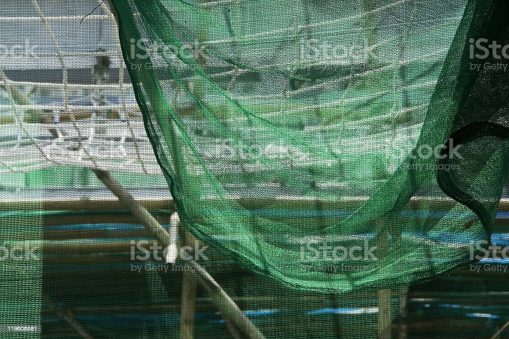Green net background royalty-free stock photo