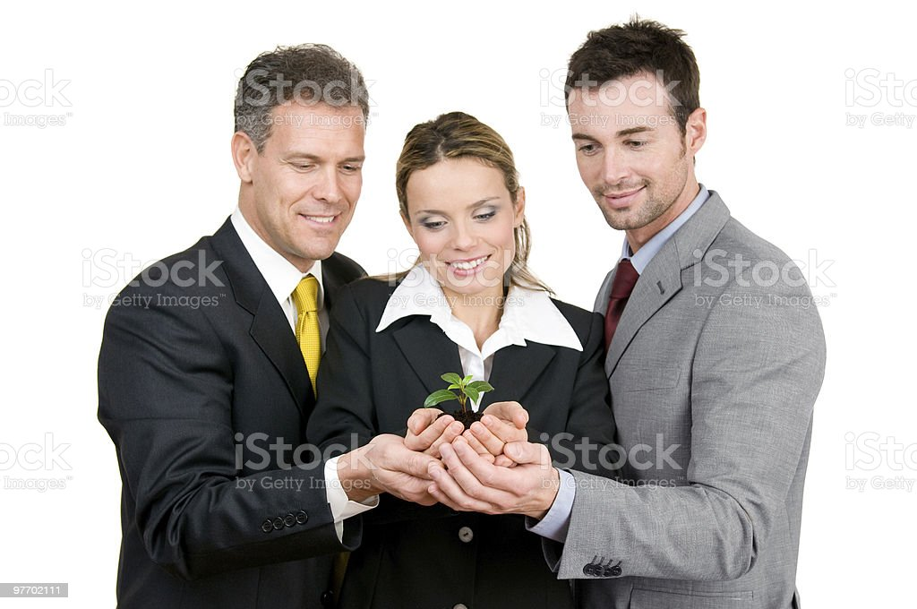 Green new growing business royalty-free stock photo