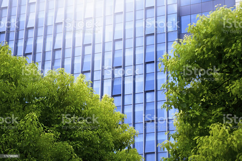 Green office building environment royalty-free stock photo