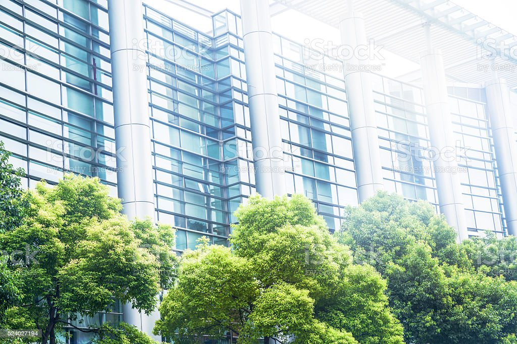 Green tree with modern office building
