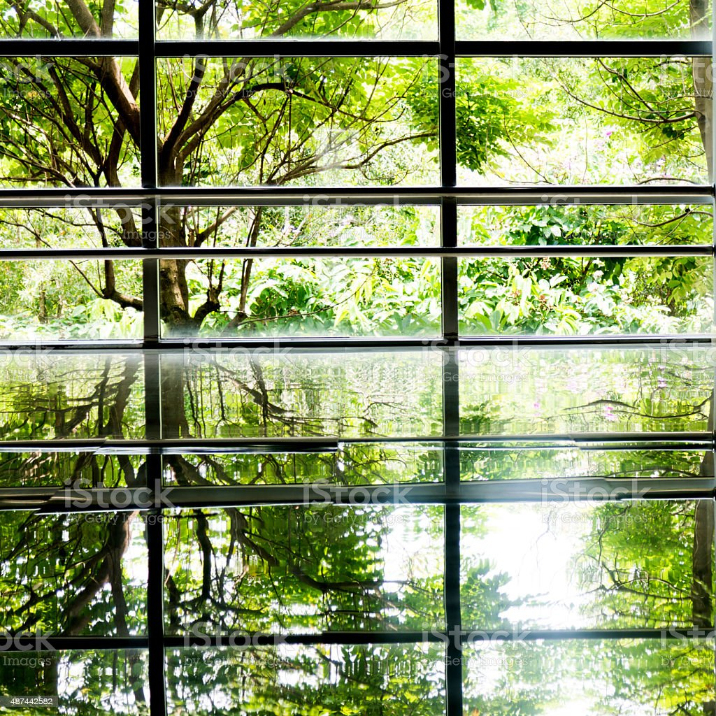 Modern office corridor with large windows and green trees outside.