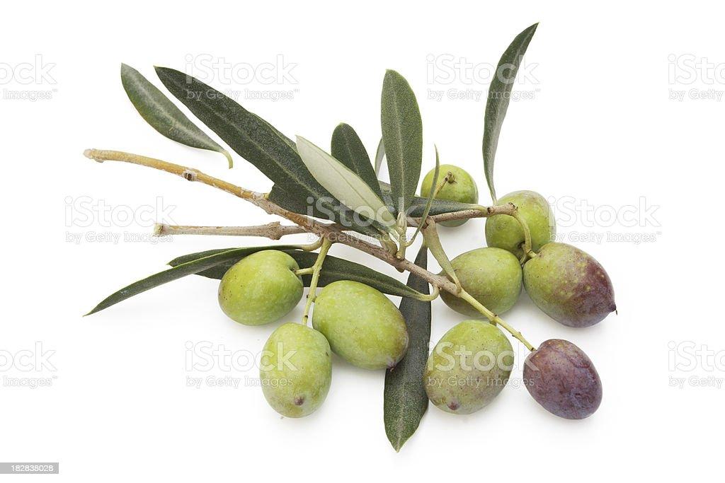 Green Olives. royalty-free stock photo