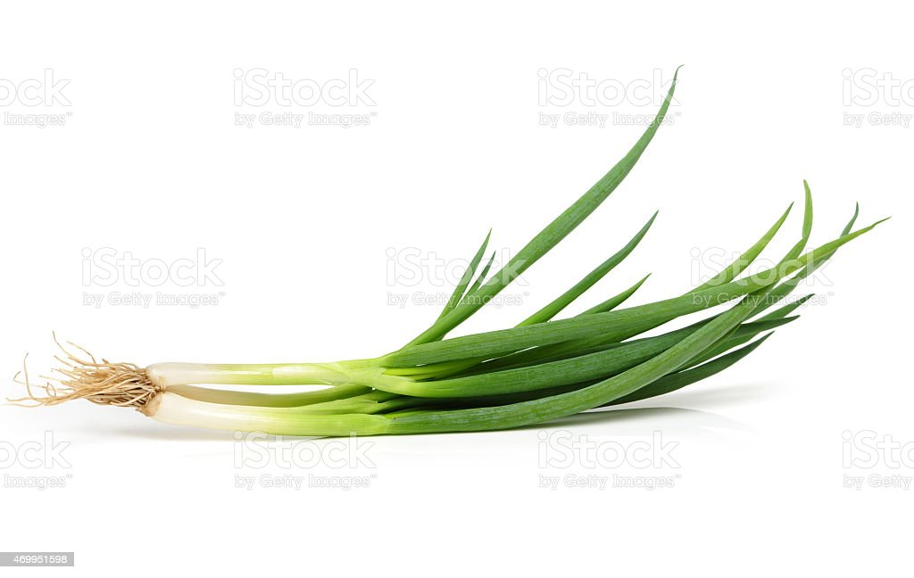 green onions stock photo
