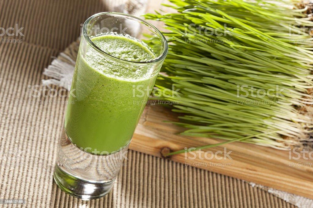 Green organic wheat grass drink stock photo