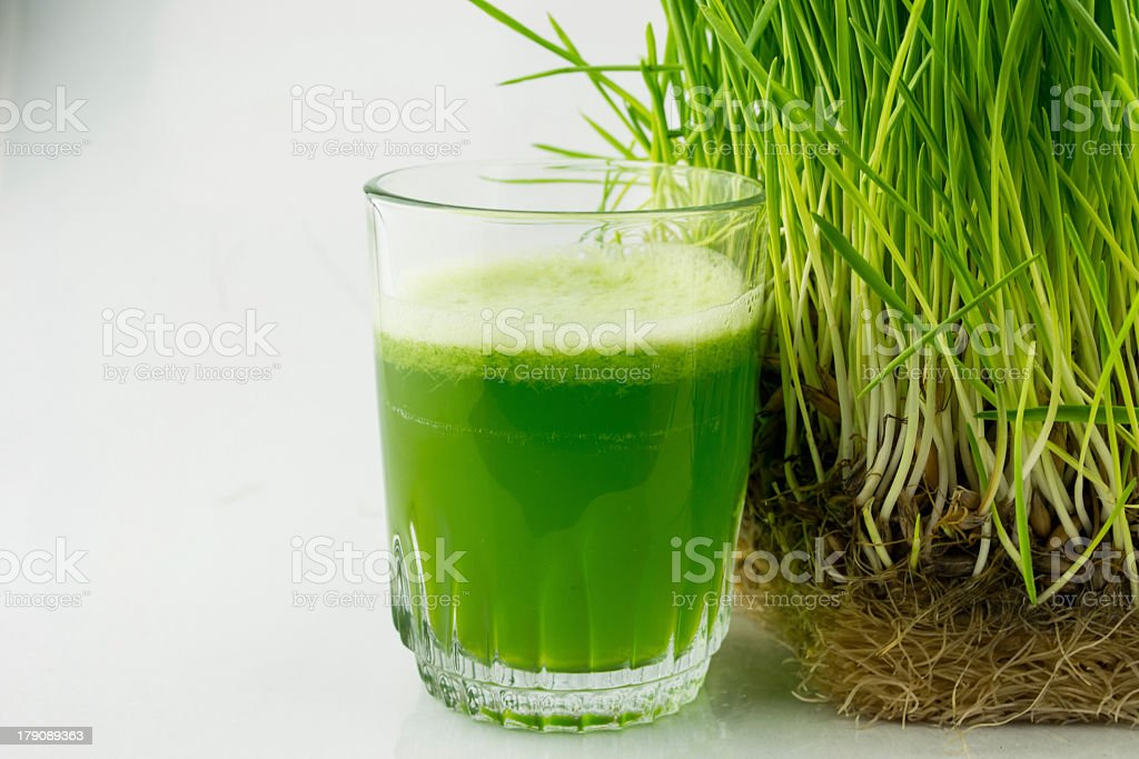 Green Organic Wheat Grass Juice beside a wheat grass plant stock photo