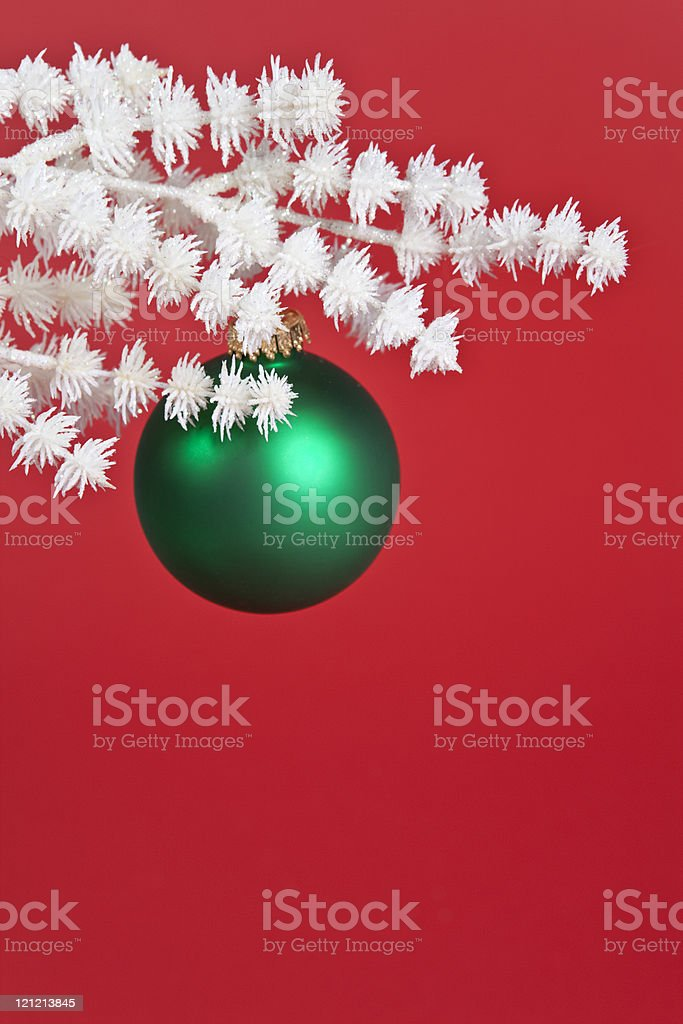 Green Ornament on White Branch royalty-free stock photo