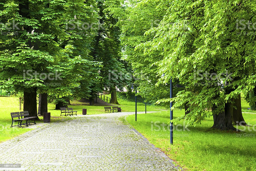 Green Park in Spring stock photo