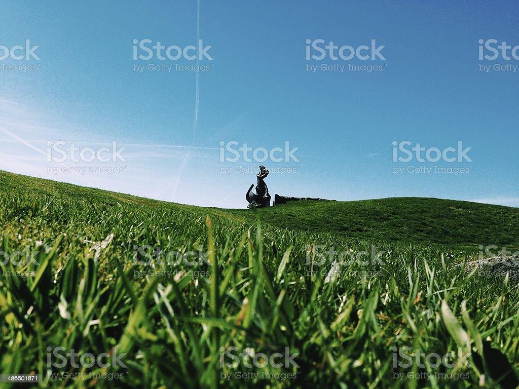 Green Park Lawn stock photo