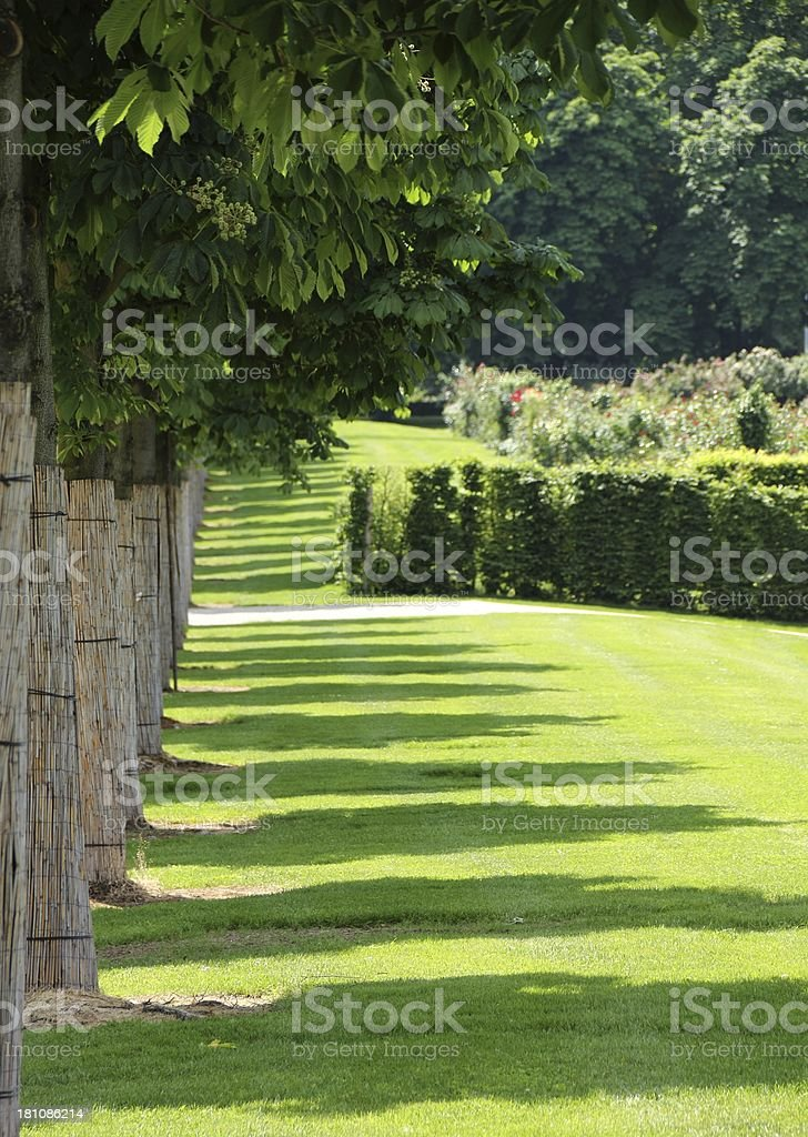 Green park royalty-free stock photo