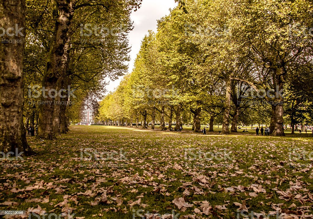 Green Park - Royal Public Park in London stock photo