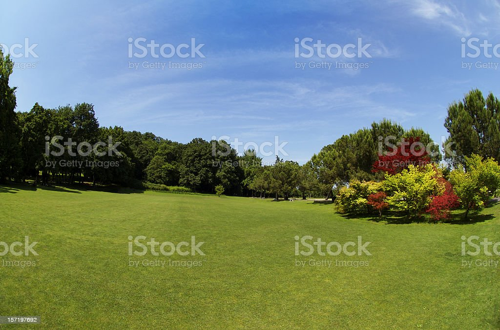 Green park scenario with blue sky royalty-free stock photo