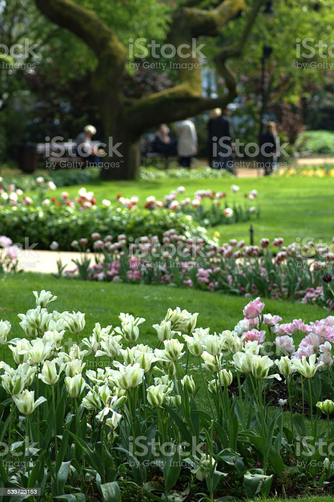 Green Park Spaces in London stock photo