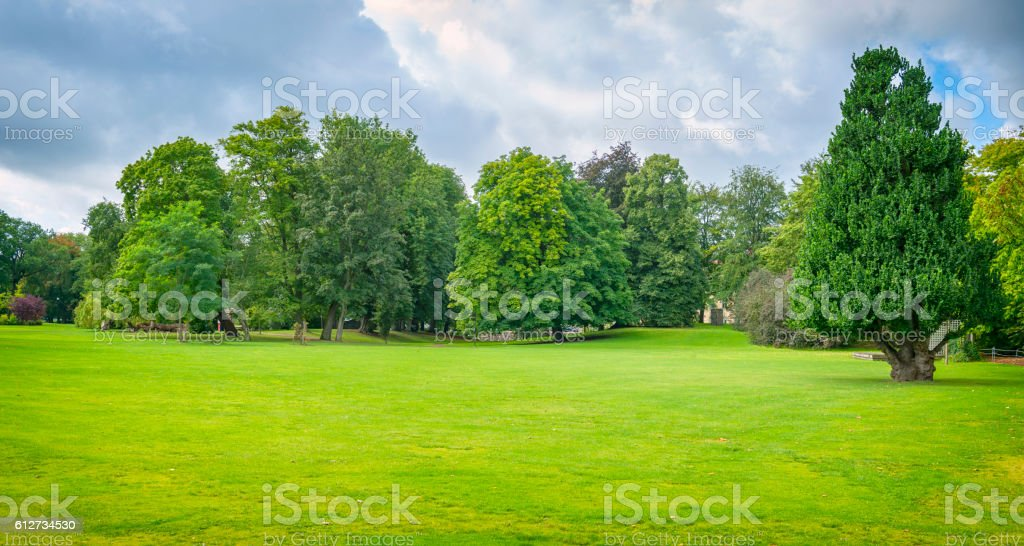 Green park with great lawn stock photo