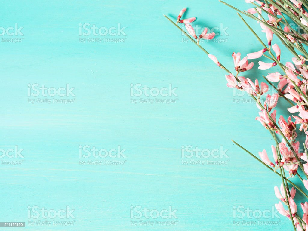 Green pastel background with flowers stock photo