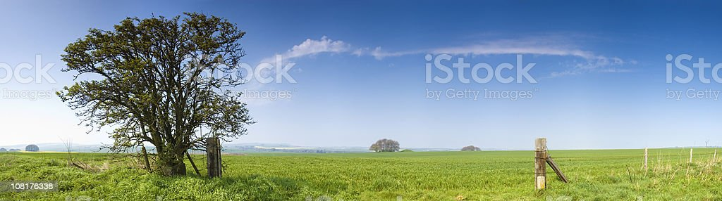 Green Pasture Against Blue Sky royalty-free stock photo
