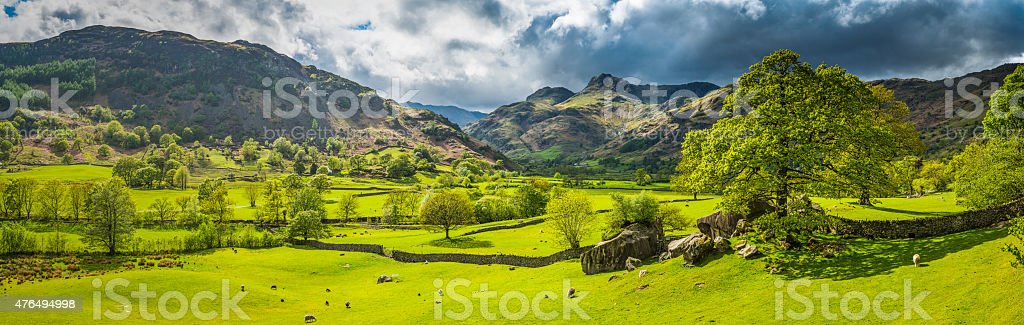 Green pasture idyllic mountain valley panorama Langdale Lake District Cumbria stock photo