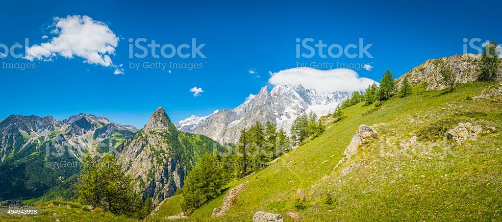 Green pasture pine forests and dramatic mountain peaks Alps Italy stock photo