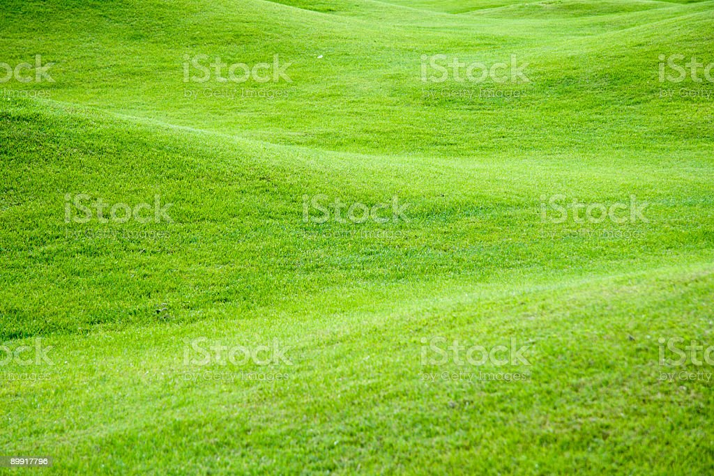 Green pastures royalty-free stock photo