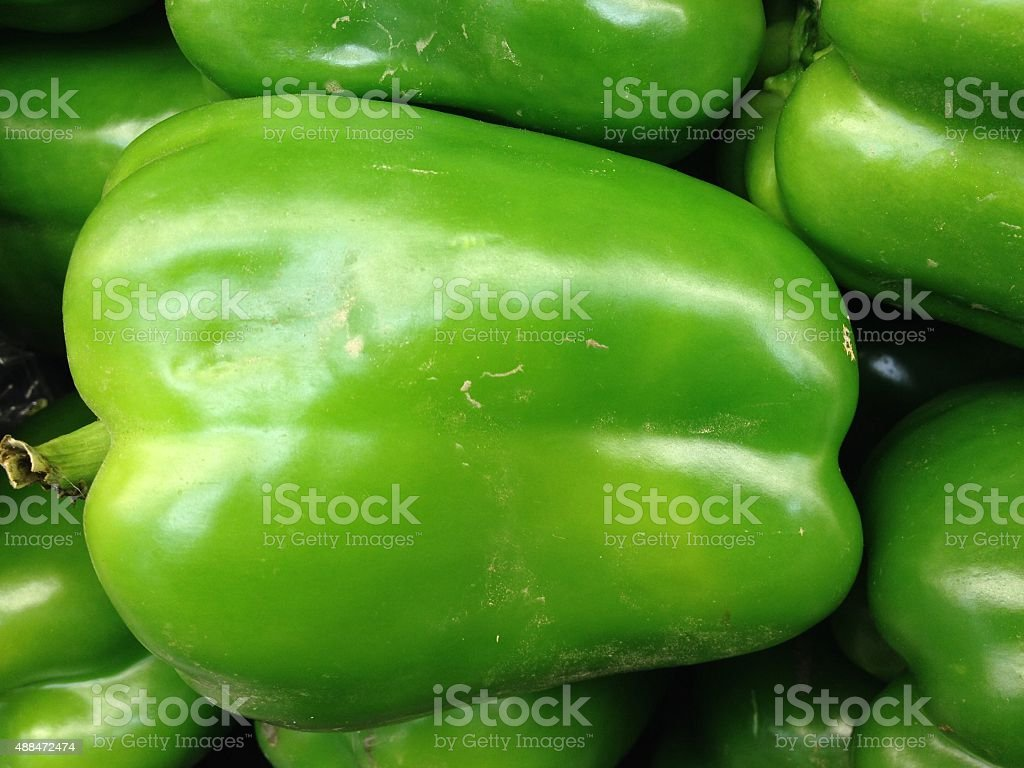 Green Pepper royalty-free stock photo