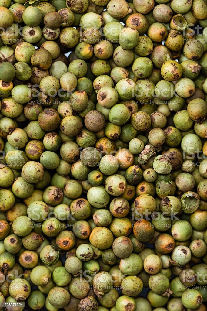 Green Peppercorns stock photo