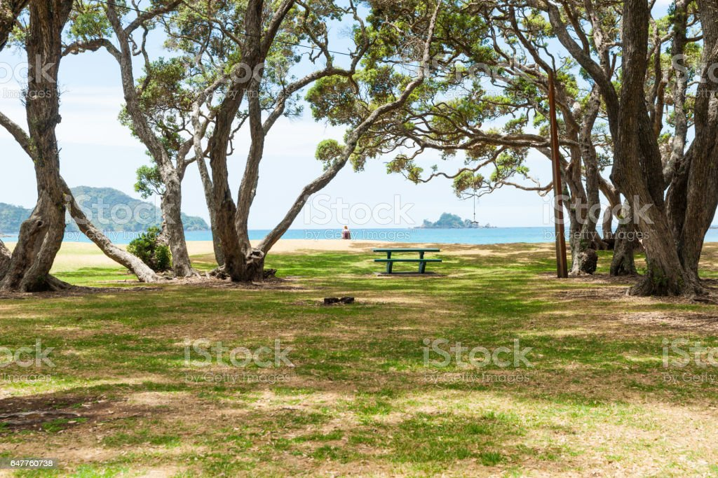 green picnic table and swing under trees by beach stock photo