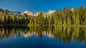 Green Pine trees reflection in a high mountian lake