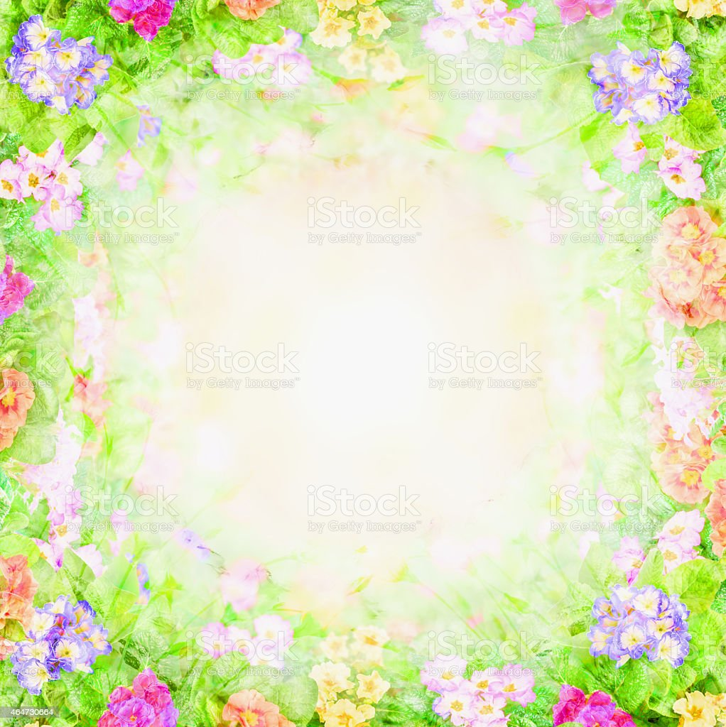 green pink blurry floral background, flowers frame stock photo