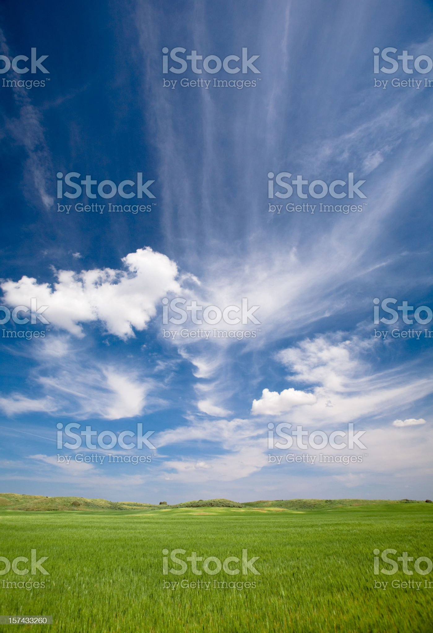 Green Planet royalty-free stock photo