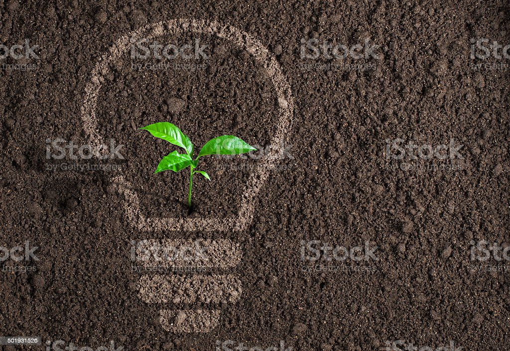 Green plant in light bulb silhouette on soil background stock photo