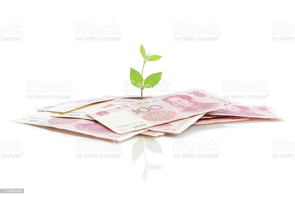 Green plant leaf growing on money royalty-free stock photo