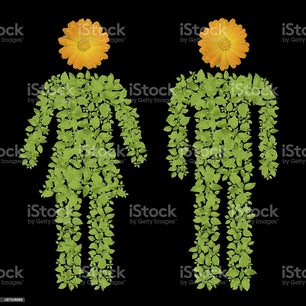 green plant Male and Female symbol royalty-free stock photo