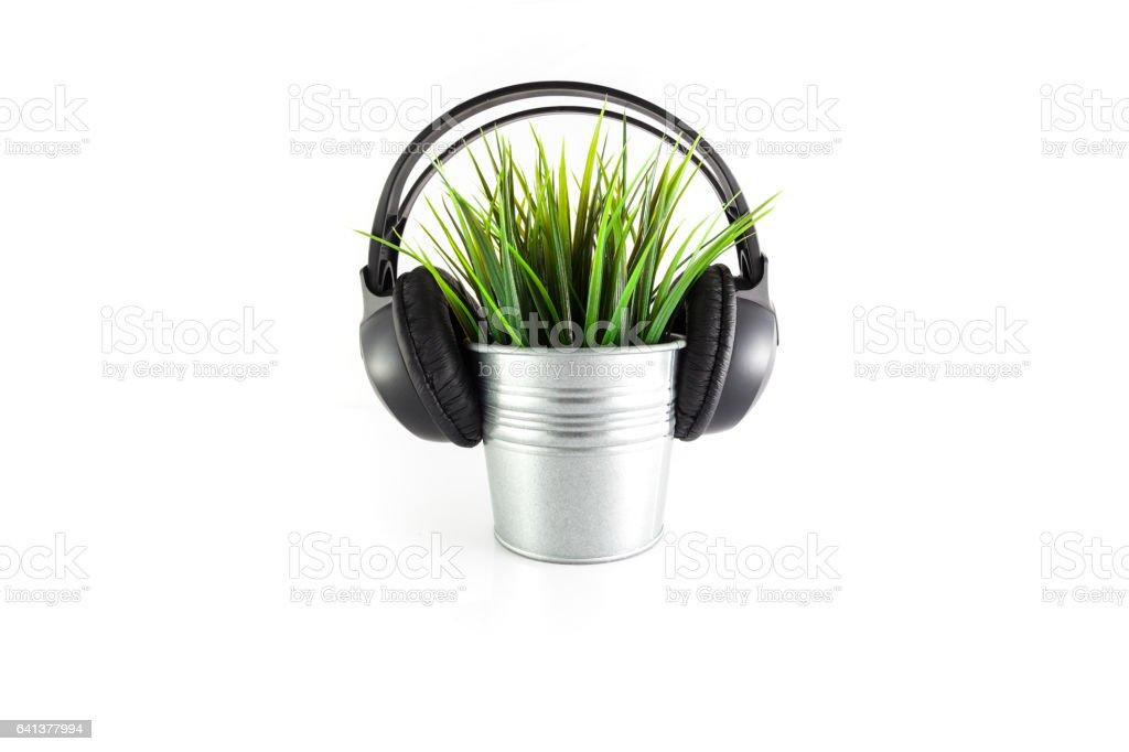 Green plant with headphones stock photo