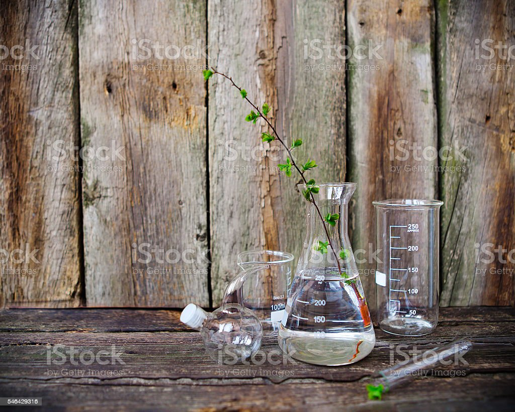 Green plants in laboratory equipment stock photo