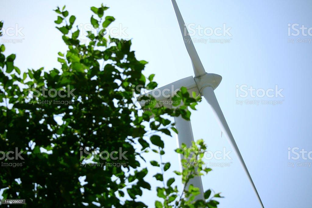 Green Power | Windmill royalty-free stock photo