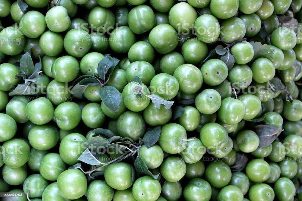 Зеленый против заболевания легких Стоковые фото Стоковая фотография
